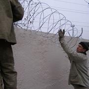 Монтаж колючей проволоки СББ Егоза, в Казахстане фото