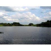 Оформить землю в Волоколамском районе в собственность фото