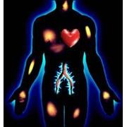 Диагностика Intera-DiaCor фото