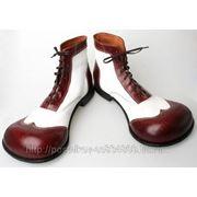 Ремонт (реставрация) модельной обуви,профилактические материалы иностранных и отечественных производителей ... фото