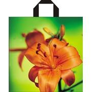Производим все виды полиэтиленовых пакетов, мешки из полиэтилена, плёнка, полиэтиленовые вкладыши. Пакеты с логотипом. фото