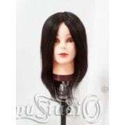 Голова-манекен ученическая HZ-1702 фото