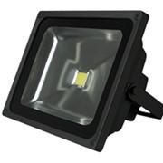 Светодиодный Прожектор Gauss LED 50W COB (6500К, защита IP65) фото