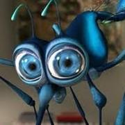 Средства от насекомых фото