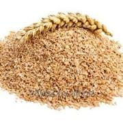 Отруби пшеницы фото