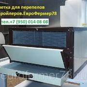 Клетка для перепелов бройлеров на 30 гол КПБ-30 фото