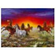 """Стандартное флуоресцентное полиэстровое полотно-обои """"Mustang Dawn"""" фото"""