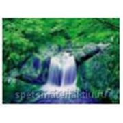 """Стандартное флуоресцентное полиэстровое полотно-обои """"Forest Fall-1 """" фото"""