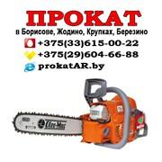 Прокат и аренда бензопилы в Борисове, Жодино