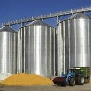 Силоса для сушки зерновых фото