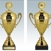 Кубки спортивные,призовые,памятные,юбилейные,наградные. фото