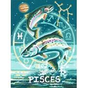 Картина по номерам Знак Зодиака Рыбы фото