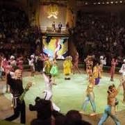 Создание и прокат цирковых программ фото