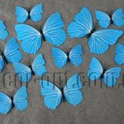 Бабочки пластиковые голубые на магните/липучке 6-12 см 12 шт 7337 фото