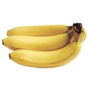 Созревание бананов и торговля фото