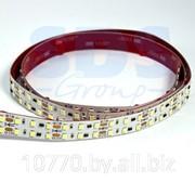 LED лента открытая, ширина 16 мм, IP23, SMD 2835, 192 диода/метр, 24V, цвет светодиодов белый,1550 лм/м фото
