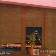Роллета бамбук фото