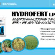 Комплексне водорозчинне добриво Гідроферт NPK 3:11:38 0.5 кг (відро) фото