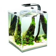 10 BLACK SHRIMP SET SMART AquaEl аквариум настольный, 10 литров, Розничная, Прозрачный с чёрной кайм фото
