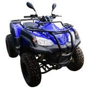 Квадроциклы Adly ATV 320 фото