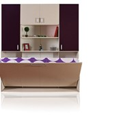 Шкаф-кровать модели ПАЛМ фото