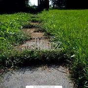 Засыпка под искусственную траву фото