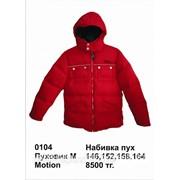 Пуховик для мальчика Motion 152 цвет Красный фото