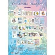 Таблиці. Загальна біологія. Частина 1. (70-48 см.) 26 шт. фото