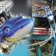 Американские горки Shark Coaster Code MX53 фото