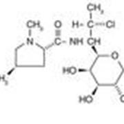 Линкомицин. линкомицина гидрохлорид фото