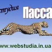 Качественный веб-дизайн. Сайты-визитки фото