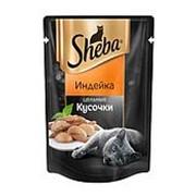 Sheba 80г пауч Влажный корм для взрослых кошек Цельные кусочки Индейка фото