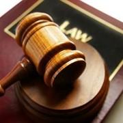 Представление интересов в судах, органах государственной власти и перед третьими лицами фото