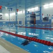 Проектирование и строительство спортивных плавательных бассейнов фото