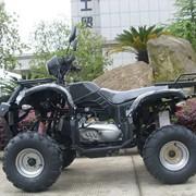 Квадроцикл ATV 200сс SL фото
