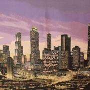 Ткань мебельная Жаккардовый шенилл Megapolis фото