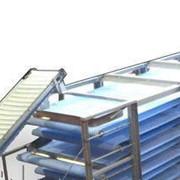 Линия производства макарон 300 кг в час фото