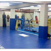 Ринг для бокса, покрытие для ринга фото