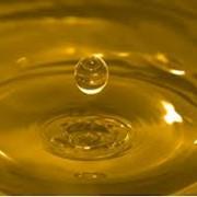 Масло нерафинированное, 5 литра фото