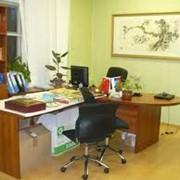 Аренда офисного оборудования фото