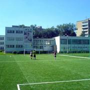 Спортивная трава для мульти-спортивных площадок фото