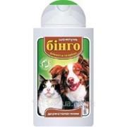 Шампунь для кошек и собак дерматологический 200 мл Бинго фото