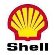 Моторное масло Shell Rimula R6 ME 5W-30 (209л) фото