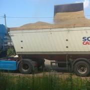 Самосвал-зерновоз фото