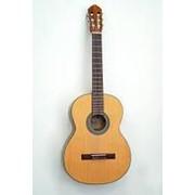 Классическая гитара Cort AC50-SG Classic Series, размер 1/2, глянцевая фото