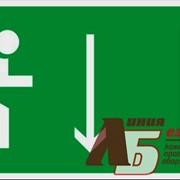 Указатель двери эвакуационного выхода правосторонний код E09 фото