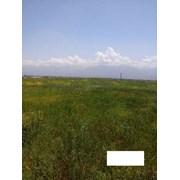 Продается земельный участок 5 соток ЛПХ фото