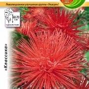 Цветы Астра Унилюкс Феникс (0,3г) фото