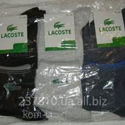 Носок мужской Lacoste фото