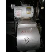 Оборудование для консервирования кукурузы. Куттер FMS.